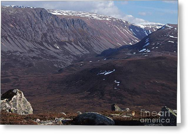 Lurcher Greeting Cards - Lurchers Crag - Cairngorm Mountains Greeting Card by Phil Banks