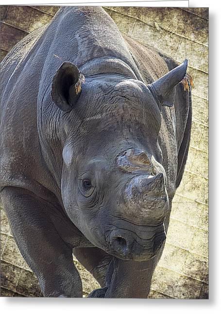 Zimbabwe Greeting Cards - Lurching Rhino Greeting Card by Bill Tiepelman