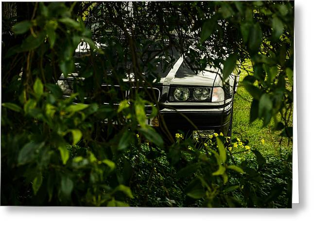 Speed Trap Greeting Cards - Lurking II Greeting Card by Marco Oliveira