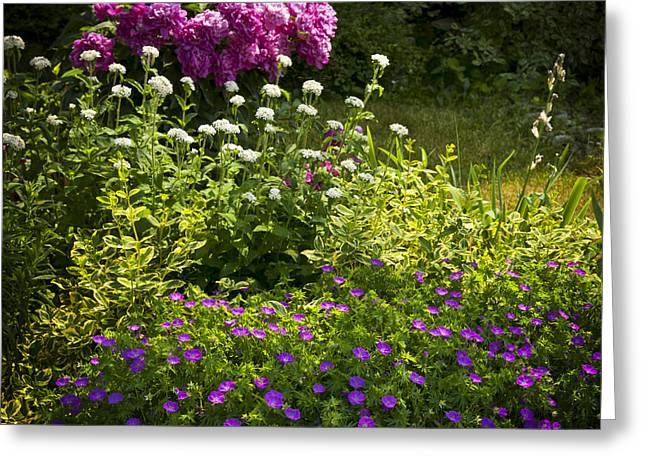 Shady Greeting Cards - Lush blooming garden  Greeting Card by Elena Elisseeva