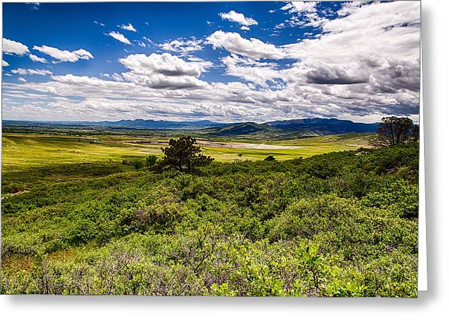 Fort Collins Greeting Cards - Lush Landscapes Greeting Card by Tony Boyajian