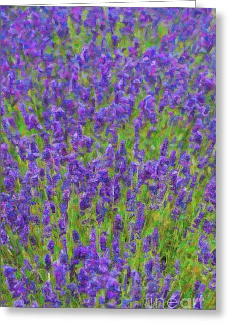 Lush Colors Greeting Cards - Lush Lavendula Greeting Card by Tim Gainey
