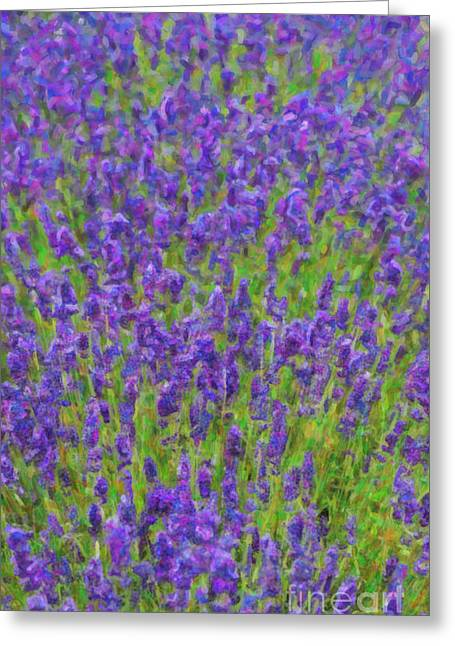 Lush Greeting Cards - Lush Lavendula Greeting Card by Tim Gainey
