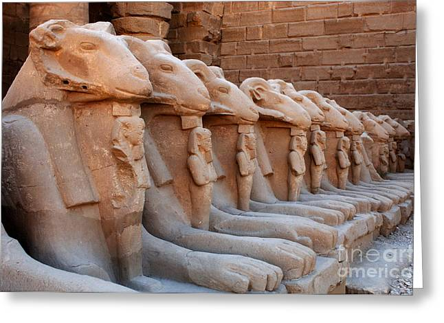 Luxor Greeting Cards - Luxor Temple 3 Greeting Card by Bob Christopher