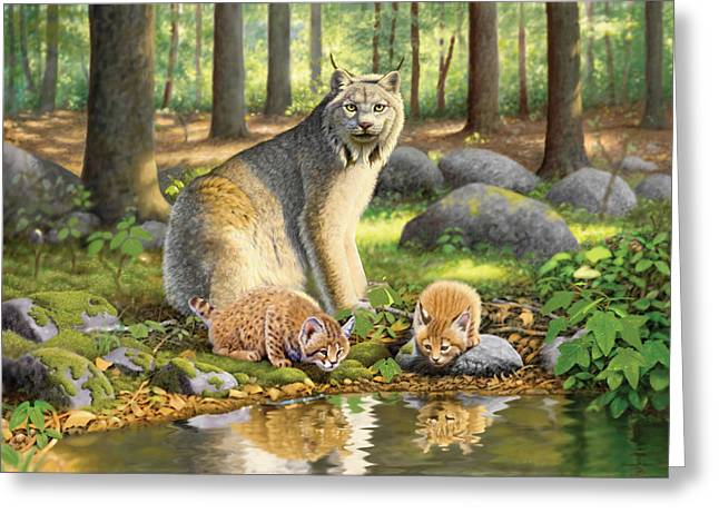 Lynx Greeting Cards - Lynx And Kittens Greeting Card by Chris Heitt