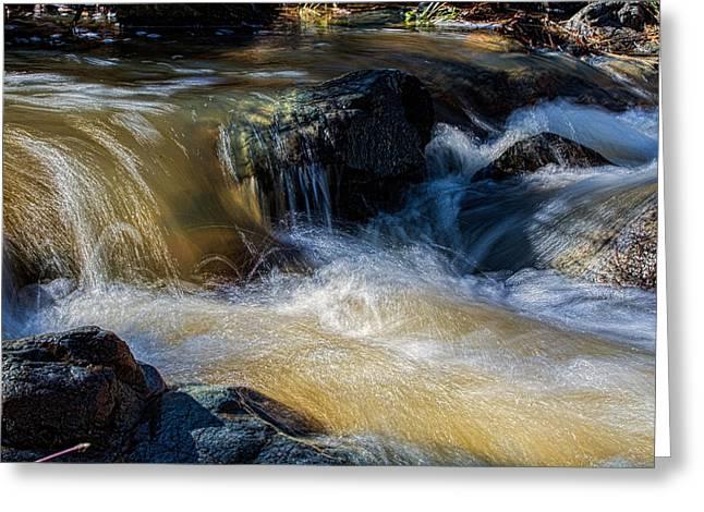 Prescott Greeting Cards - Lynx Creek Greeting Card by Bob Busch
