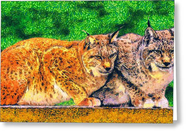 Bobcat Drawings Drawings Greeting Cards - Lynx Greeting Card by George Rossidis