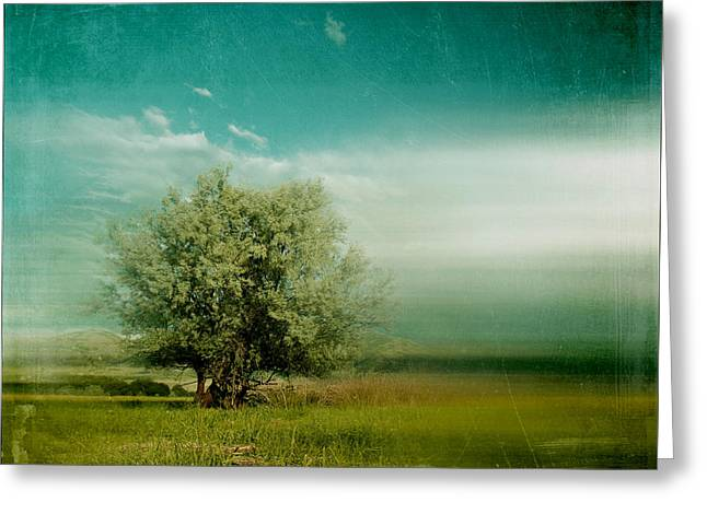 Lyrical Tree - 0109bt01d Greeting Card by Variance Collections