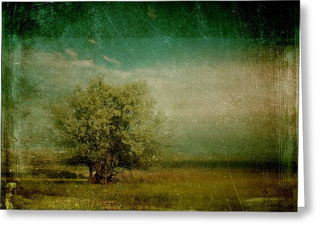 One Tree Greeting Cards - Lyrical tree - 0109bt1e3 Greeting Card by Variance Collections