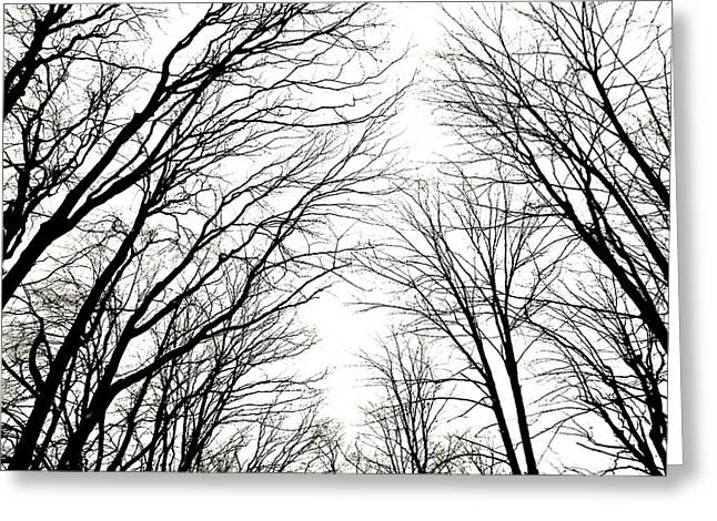 Castle Horror Illustration Greeting Cards - M C tree tops Greeting Card by Jeffrey J Nagy