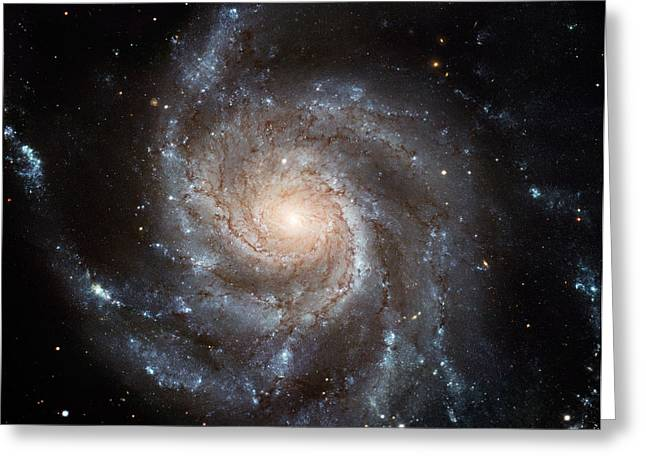 Hubble Greeting Cards - M101 Galaxy Greeting Card by Space Art Pictures