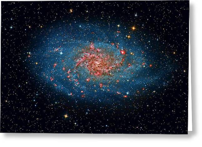 Glister Greeting Cards - M33 Spiral Galaxy Greeting Card by Celestial Images