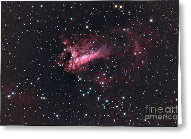 M17 The Swan Nebula Complex Greeting Card by John Chumack