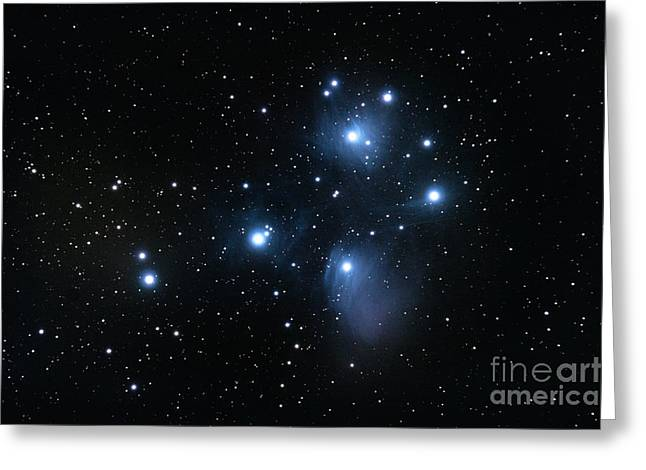 Interstellar Space Pyrography Greeting Cards - M45 Pleiades open star cluster Greeting Card by David Herraez