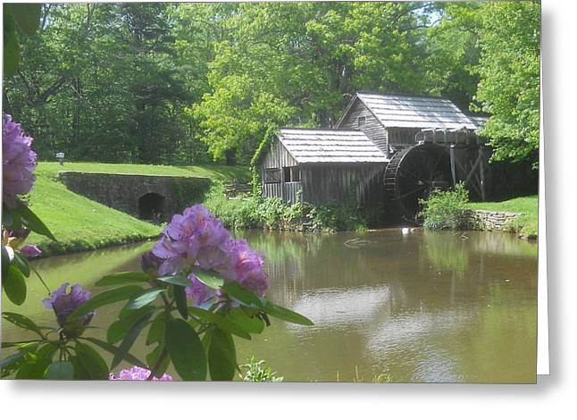 Mabry Mill In May Greeting Card by Diannah Lynch