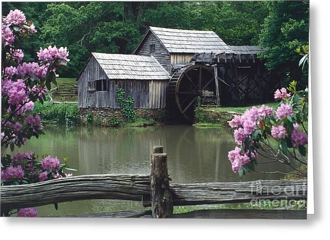 Grist Mill Greeting Cards - Mabry Mill Springtime Greeting Card by Joe Elliott