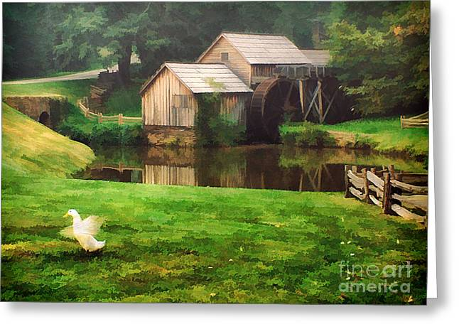 Mabrys Mill And The Welcoming Committee Greeting Card by Darren Fisher