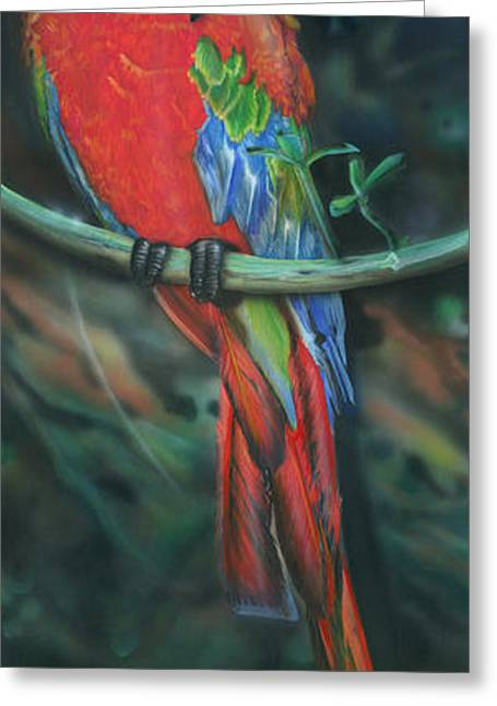 Macaw Parrot Greeting Cards - Macaw Greeting Card by Luis  Navarro