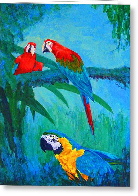Saheed Greeting Cards - Macaw Trio Greeting Card by Margaret Saheed