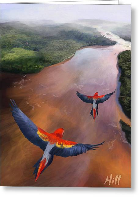 Kevin Hill Greeting Cards - Macaws in Flight Greeting Card by Kevin Hill