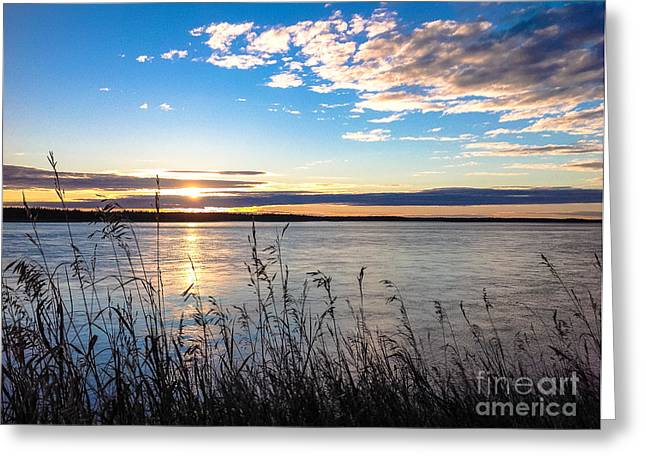 View Framed Prints Greeting Cards - Mackenzie River Greeting Card by Lisa Killins