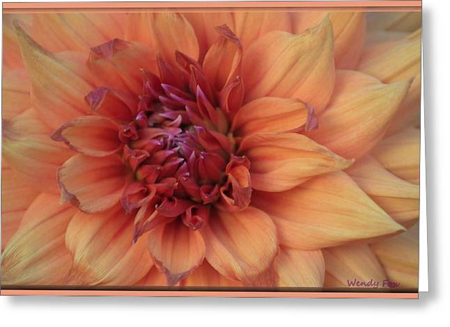 Dinner-plate Dahlia Greeting Cards - Macro Dahlia Greeting Card by Wendy Fox