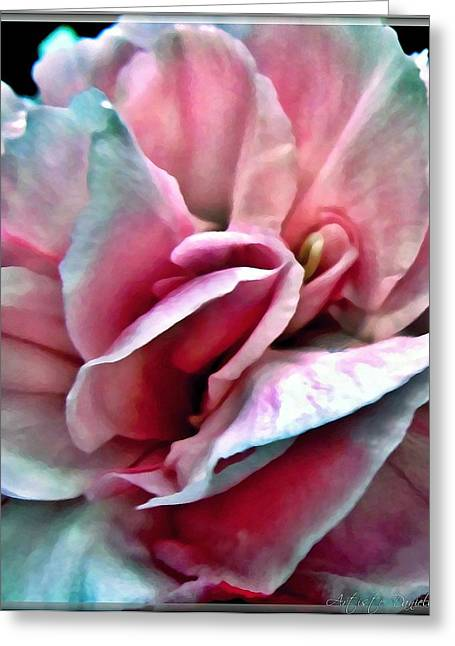 Fineartamerica Greeting Cards - Macro Mini Pink Blue Carnation Greeting Card by Danielle  Parent