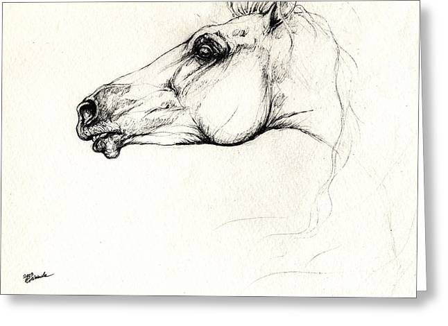 Sparring Greeting Cards - Mad Andalusian Horse Drawing 05 11 2013 Greeting Card by Angel  Tarantella