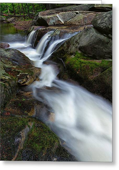 Moss-covered Greeting Cards - Mad River Flume Greeting Card by Jeff Sinon