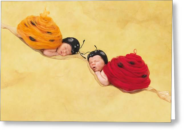 Heartfelt Greeting Cards - Dakota and Cameron Greeting Card by Anne Geddes