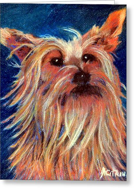 Puppies Pastels Greeting Cards - Made My Day   pastel Greeting Card by Antonia Citrino