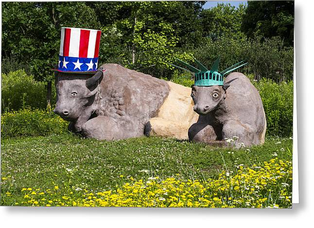 4th July Greeting Cards - Madison - July 4 buffalo Greeting Card by Steven Ralser