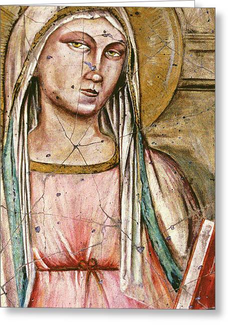Virgin Mary Greeting Cards - Madonna Del Parto - Study No. 1 Greeting Card by Steve Bogdanoff