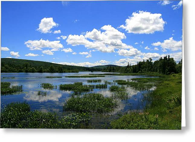 Neal Eslinger Greeting Cards - Magalloway River Blues  Greeting Card by Neal  Eslinger