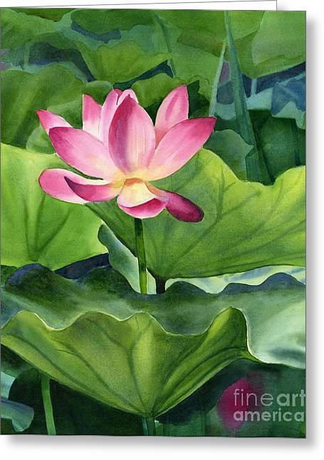Pink Lotus Greeting Cards - Magenta Lotus Blossom Greeting Card by Sharon Freeman