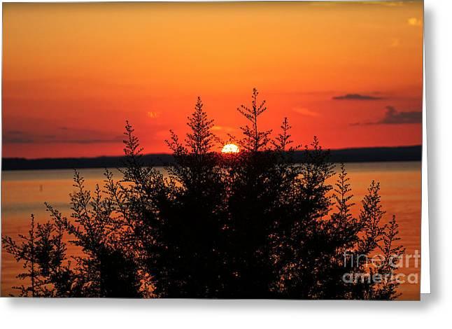 Sunset Prints Greeting Cards - Magic At Sunset Greeting Card by Ella Kaye Dickey