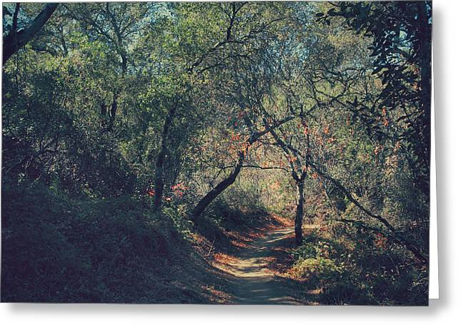 Nature Preserve Greeting Cards - Magic Awaits Us Greeting Card by Laurie Search