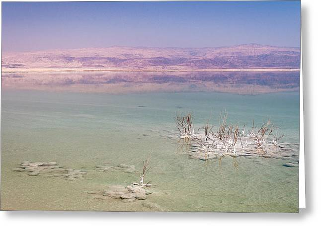 Jordan Greeting Cards - Magic colors of the Dead Sea Greeting Card by Sergey Simanovsky