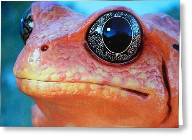 Origional Greeting Cards - Magic Frog  Greeting Card by Gunter  Hortz