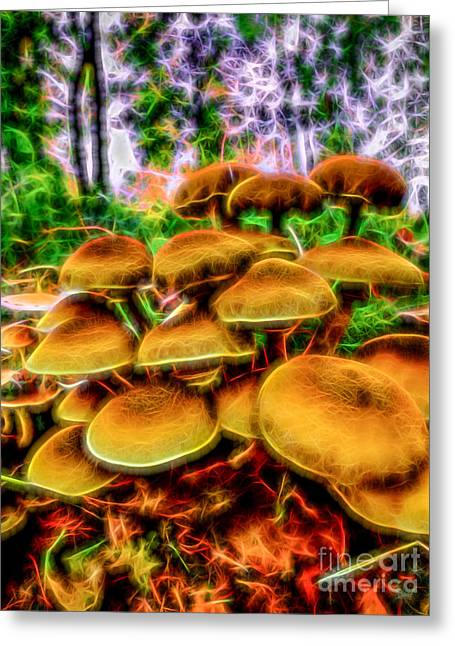 Herfst Greeting Cards - Magic Mushroom-1 Greeting Card by Casper Cammeraat