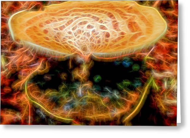 Herfst Greeting Cards - Magic Mushroom-4 Greeting Card by Casper Cammeraat