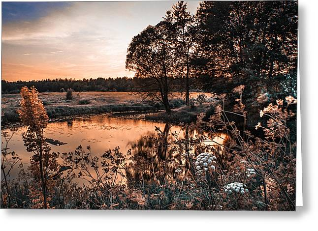 Willow Lake Greeting Cards - Magic of Changes. Nature in Alien Skin Greeting Card by Jenny Rainbow