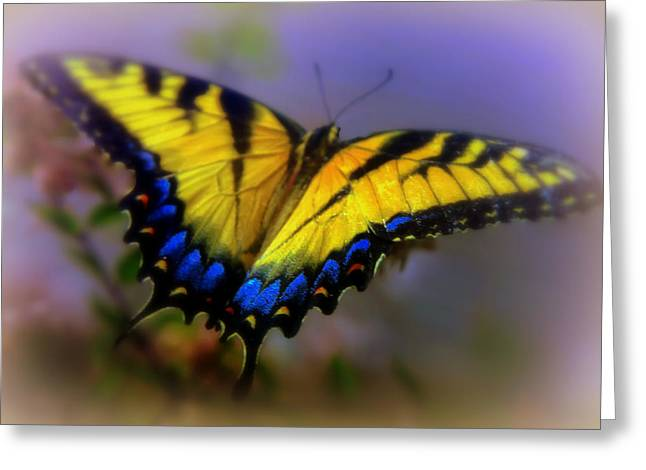 Swallowtail Greeting Cards - MAGIC of FLIGHT Greeting Card by Karen Wiles