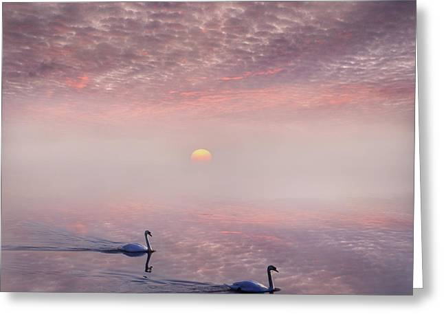 Muted Mauve Greeting Cards - Magic of the Dawn Greeting Card by Adrian Campfield