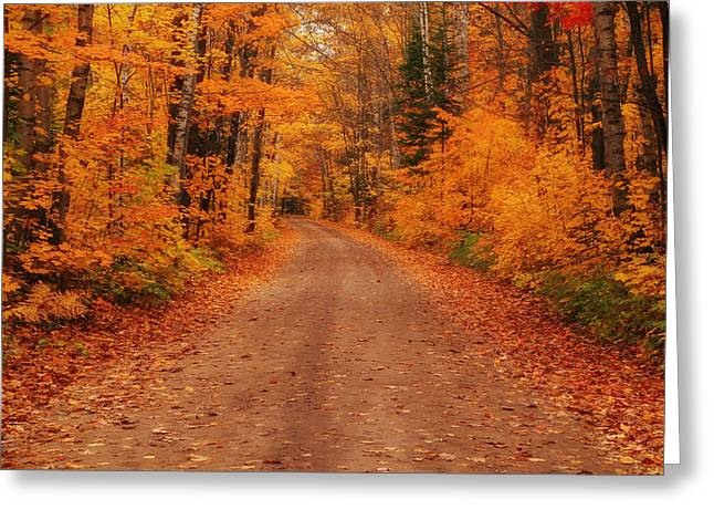 Autumn In The Country Greeting Cards - Magical Autumn Mystery Greeting Card by Rachel Cohen