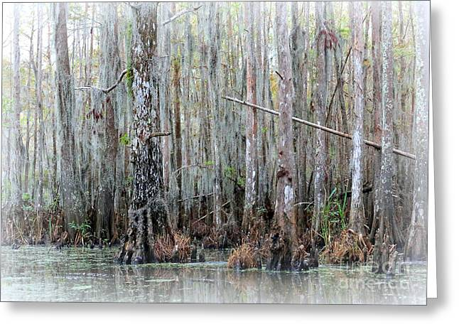 Best Sellers -  - Subtle Colors Greeting Cards - Magical Bayou Greeting Card by Carol Groenen