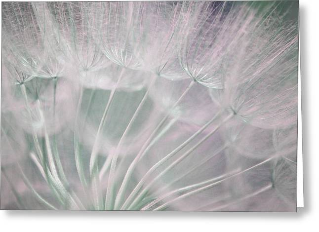 Best Greeting Cards - Magical Beauty Greeting Card by  The Art Of Marilyn Ridoutt-Greene