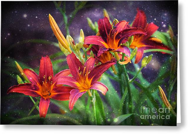 Floral Digital Art Greeting Cards - Magical Evening Daylilies Greeting Card by Carol Groenen