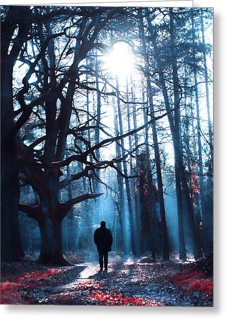 Silhouettes Greeting Cards - Magical forest Greeting Card by Joanna Jankowska