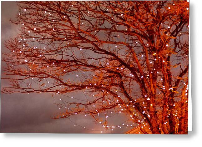 Twinkle Greeting Cards - Magical In Red Greeting Card by Violet Gray